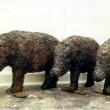 Porca Misceria: Mud Pig I