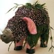 Tiger Lily Series: Rhinopig